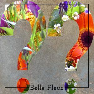Eigen Keuze Belle Fleur Bloemen en Planten Zwolle